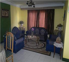 Furnished Apartment in Nasr City Cairo